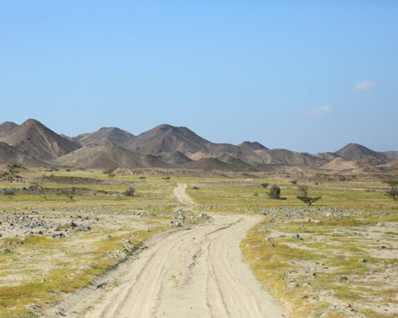 Wadi El Gemal Marsa Alam